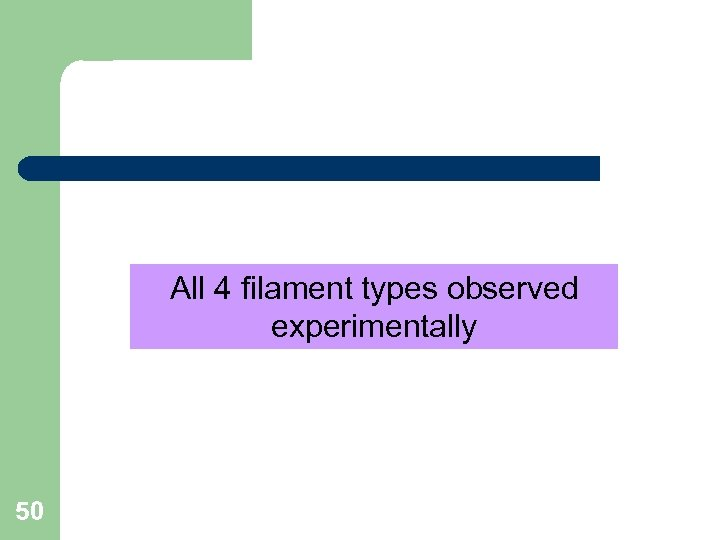 All 4 filament types observed experimentally 50