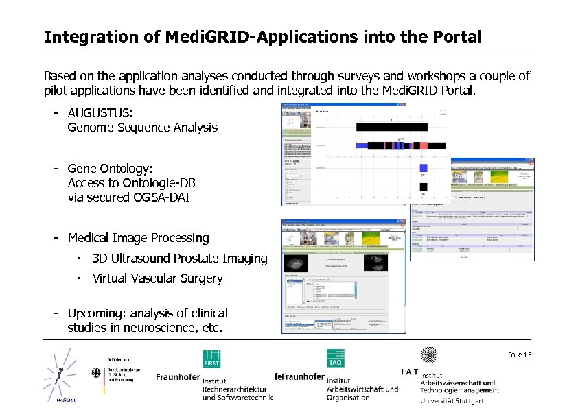 Integration of Medi. GRID-Applications into the Portal Based on the application analyses conducted through
