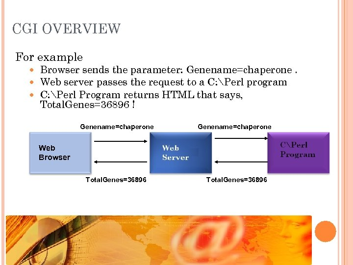 CGI OVERVIEW For example Browser sends the parameter: Genename=chaperone. Web server passes the request