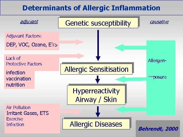 Determinants of Allergic Inflammation adjuvant Genetic susceptibility causative Adjuvant Factors: DEP, VOC, Ozone, ETS