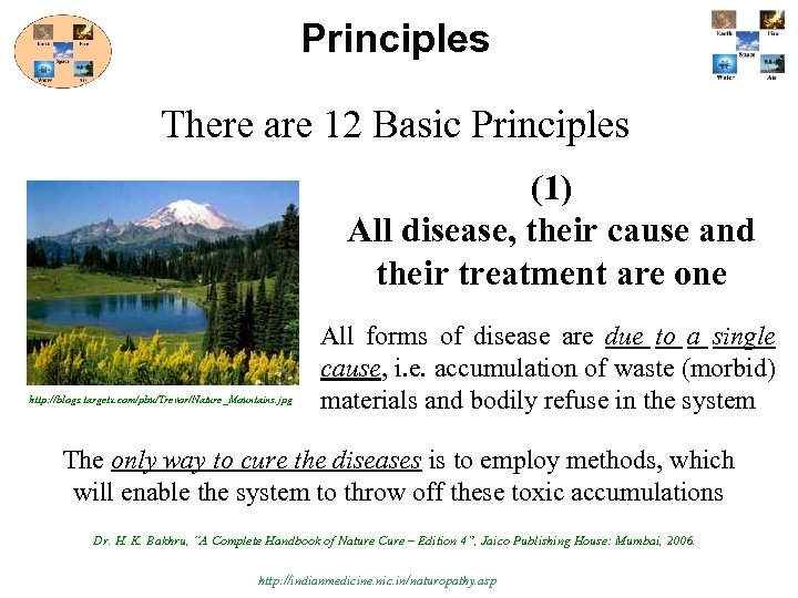 Principles There are 12 Basic Principles (1) All disease, their cause and their treatment