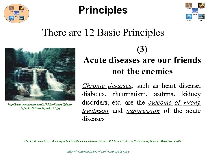 Principles There are 12 Basic Principles (3) Acute diseases are our friends not the