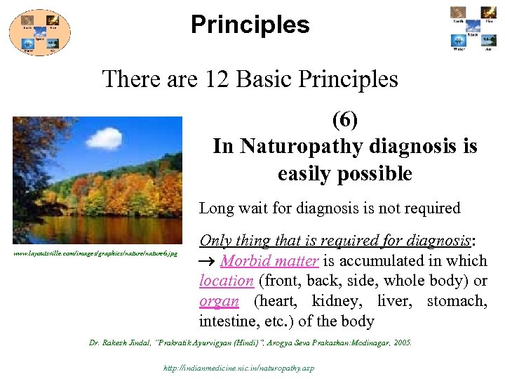 Principles There are 12 Basic Principles (6) In Naturopathy diagnosis is easily possible Long