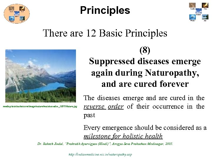 Principles There are 12 Basic Principles (8) Suppressed diseases emerge again during Naturopathy, and
