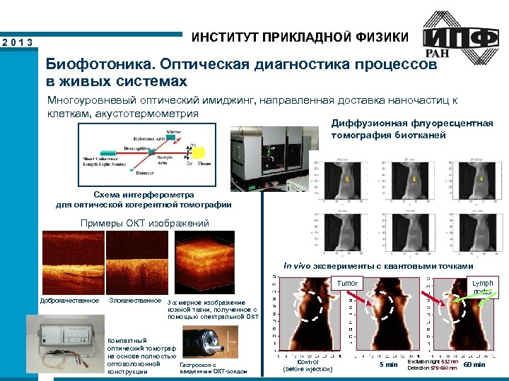ИНСТИТУТ ПРИКЛАДНОЙ ФИЗИКИ 2013 Биофотоника. Оптическая диагностика процессов в живых системах Многоуровневый оптический имиджинг,