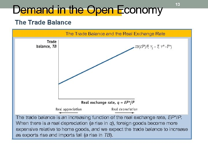 Demand in the Open Economy 13 The Trade Balance and the Real Exchange Rate