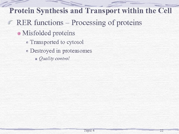Protein Synthesis and Transport within the Cell RER functions – Processing of proteins Misfolded