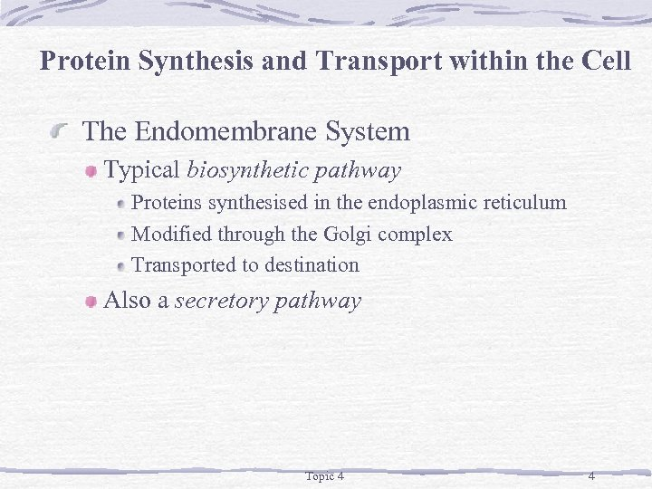 Protein Synthesis and Transport within the Cell The Endomembrane System Typical biosynthetic pathway Proteins