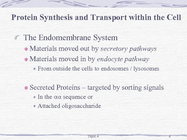 Protein Synthesis and Transport within the Cell The Endomembrane System Materials moved out by