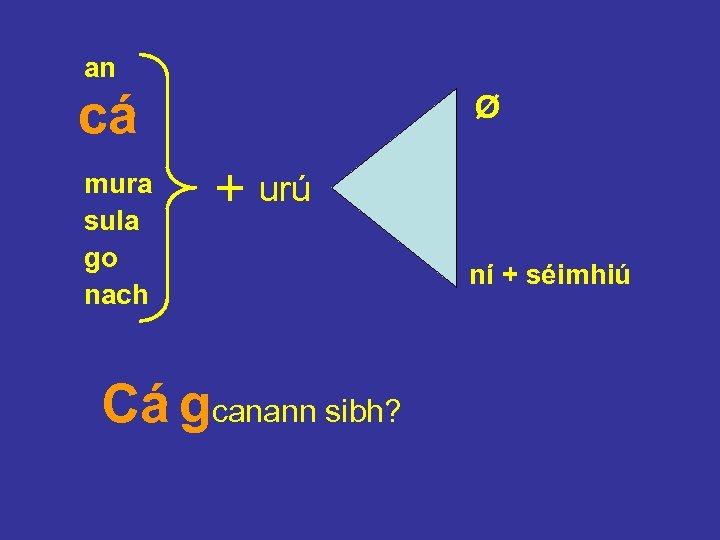 an cá mura sula go nach Ø + urú Cá gcanann sibh? ní +