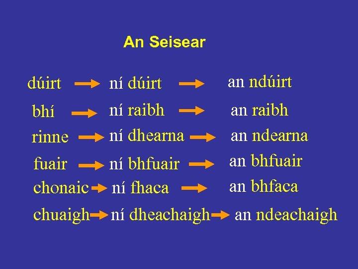 An Seisear dúirt bhí rinne fuair chonaic chuaigh ní dúirt ní raibh ní dhearna