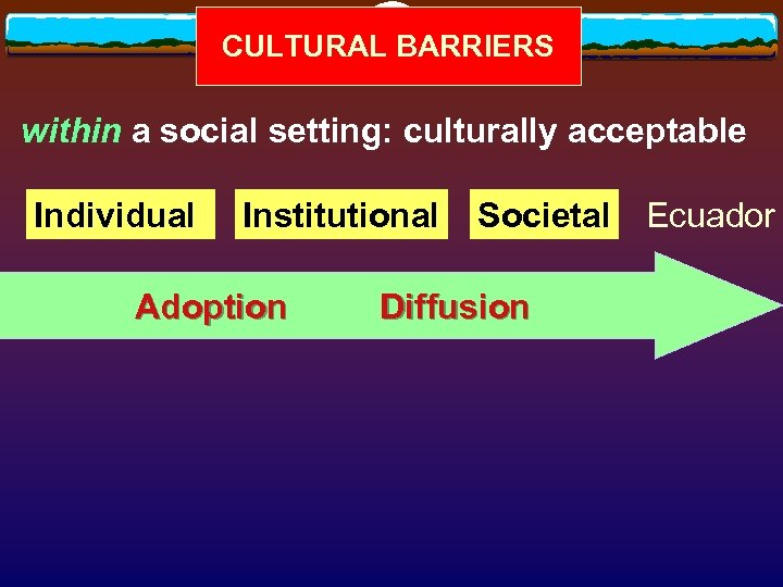 CULTURAL BARRIERS within a social setting: culturally acceptable Individual Institutional Adoption Societal Ecuador Diffusion