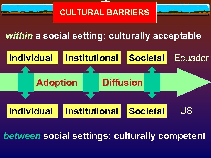 CULTURAL BARRIERS within a social setting: culturally acceptable Individual Institutional Adoption Individual Societal Ecuador