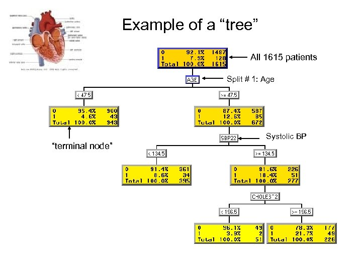 """Example of a """"tree"""" All 1615 patients Split # 1: Age Systolic BP """"terminal"""