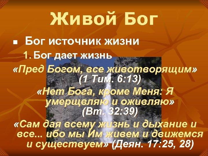 Живой Бог n Бог источник жизни 1. Бог дает жизнь «Пред Богом, все животворящим»