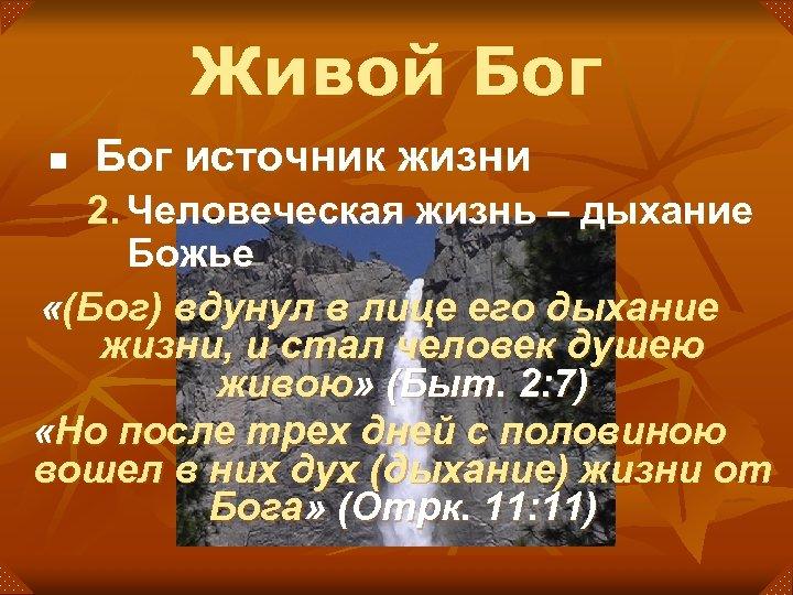 Живой Бог n Бог источник жизни 2. Человеческая жизнь – дыхание Божье «(Бог) вдунул