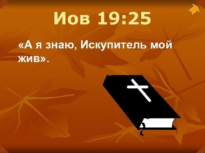 Иов 19: 25 «А я знаю, Искупитель мой жив» .