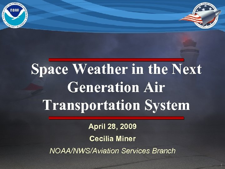 Space Weather in the Next Generation Air Transportation System April 28, 2009 Cecilia Miner