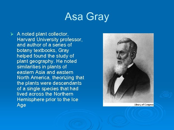 Asa Gray Ø A noted plant collector, Harvard University professor, and author of a