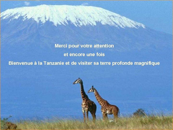 Merci pour votre attention et encore une fois Bienvenue à la Tanzanie et de