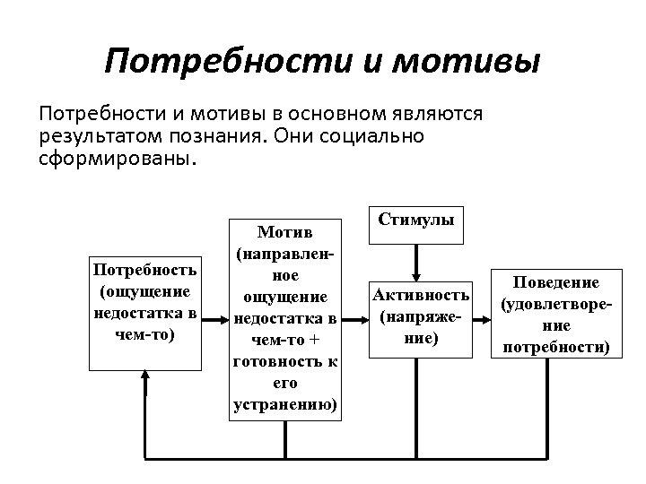 Потребности и мотивы в основном являются результатом познания. Они социально сформированы. Потребность (ощущение недостатка