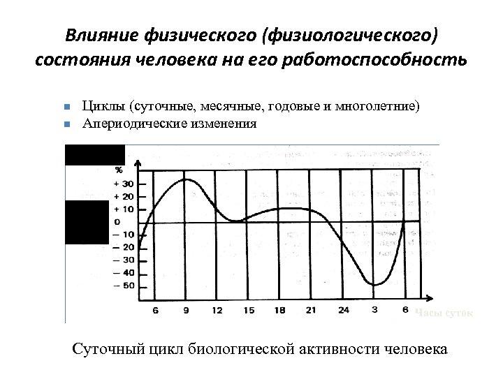 Влияние физического (физиологического) состояния человека на его работоспособность n n Циклы (суточные, месячные, годовые