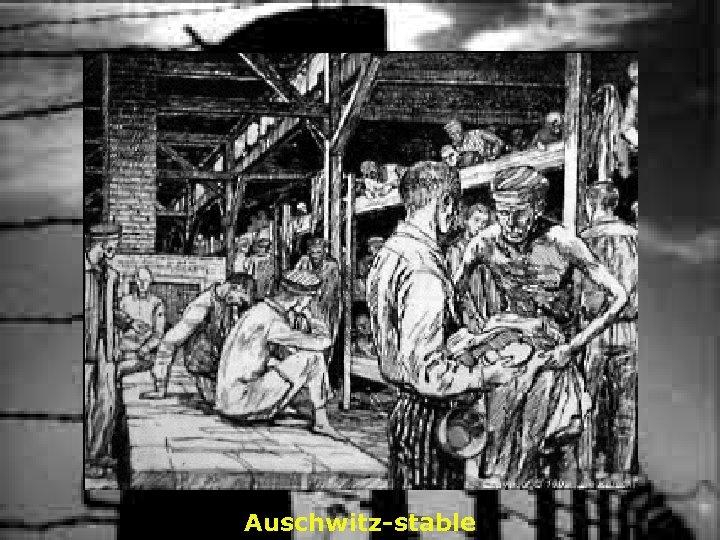 Auschwitz-stable