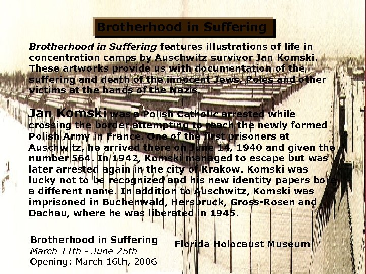 Brotherhood in Suffering features illustrations of life in concentration camps by Auschwitz survivor Jan