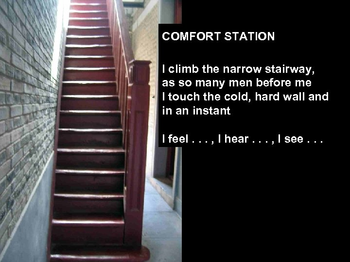 COMFORT STATION I climb the narrow stairway, as so many men before me I