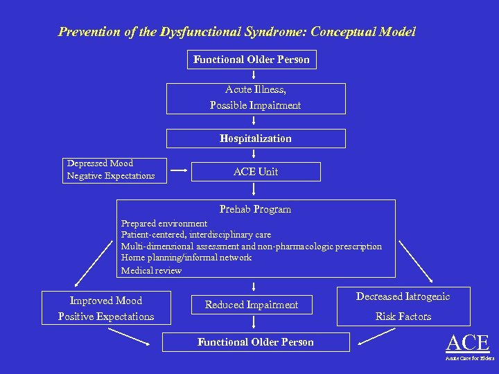 Prevention of the Dysfunctional Syndrome: Conceptual Model Functional Older Person Acute Illness, Possible Impairment