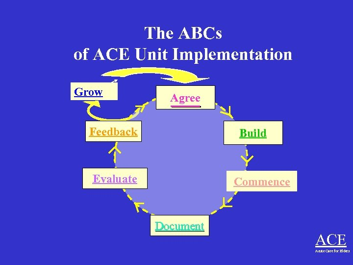 The ABCs of ACE Unit Implementation Grow Agree Feedback Build Evaluate Commence Document ACE