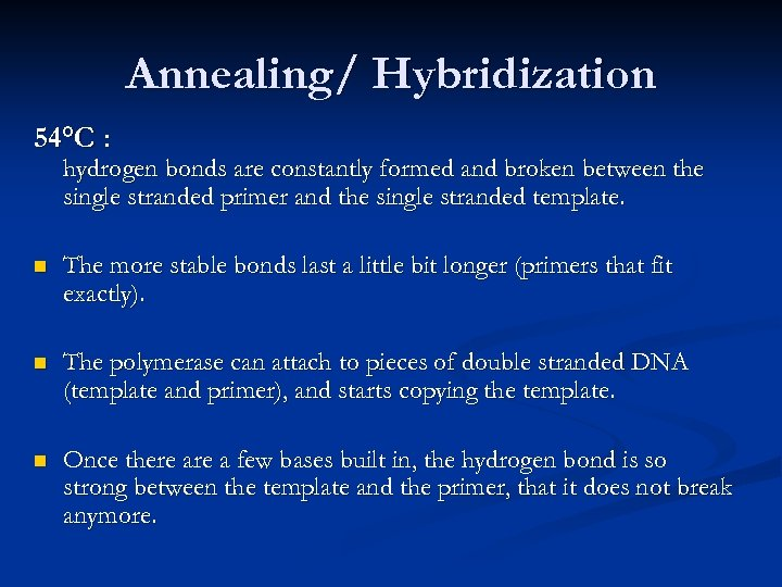 Annealing/ Hybridization 54°C : hydrogen bonds are constantly formed and broken between the single