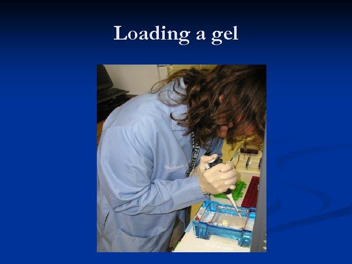 Loading a gel