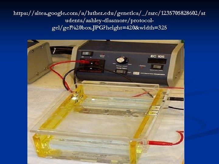 https: //sites. google. com/a/luther. edu/genetics/_/rsrc/1235705828602/st udents/ashley-dissmore/protocolgel/gel%20 box. JPG? height=420&width=325