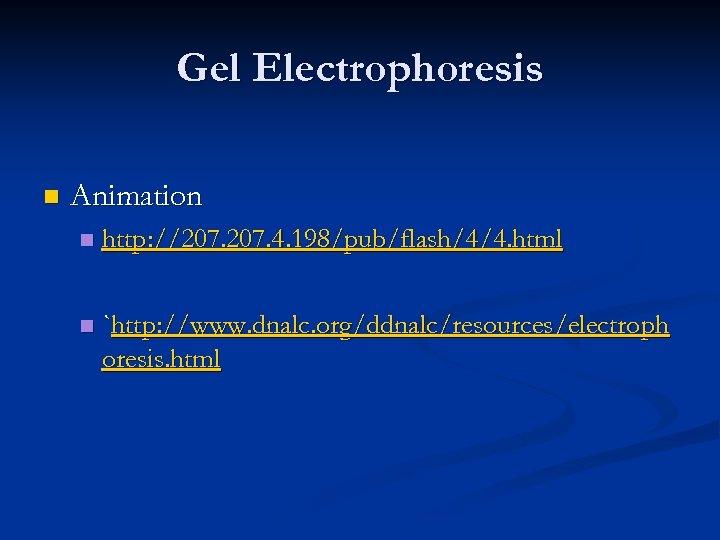 Gel Electrophoresis n Animation n http: //207. 4. 198/pub/flash/4/4. html n `http: //www. dnalc.