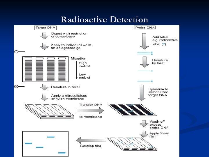Radioactive Detection