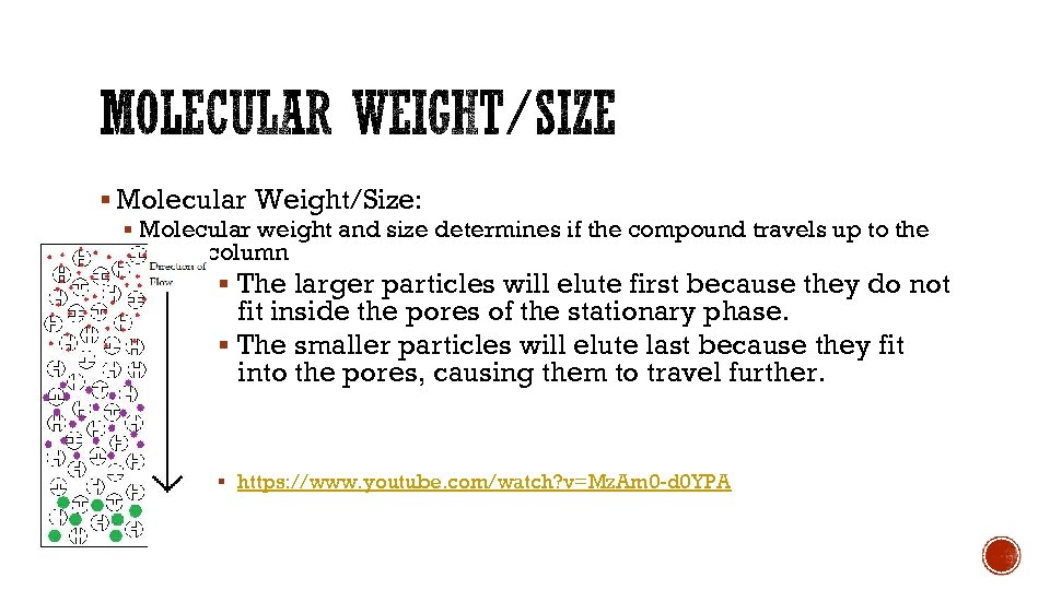 § Molecular Weight/Size: § Molecular weight and size determines if the compound travels up