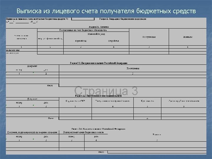 Выписка из лицевого счета получателя бюджетных средств
