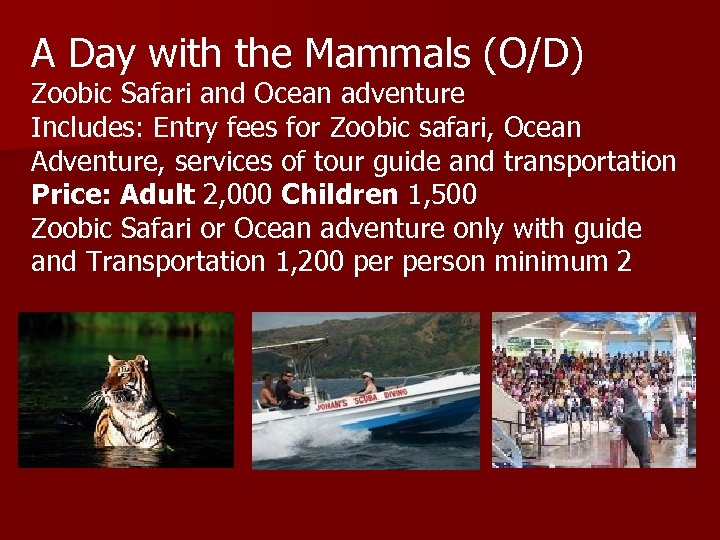 A Day with the Mammals (O/D) Zoobic Safari and Ocean adventure Includes: Entry fees