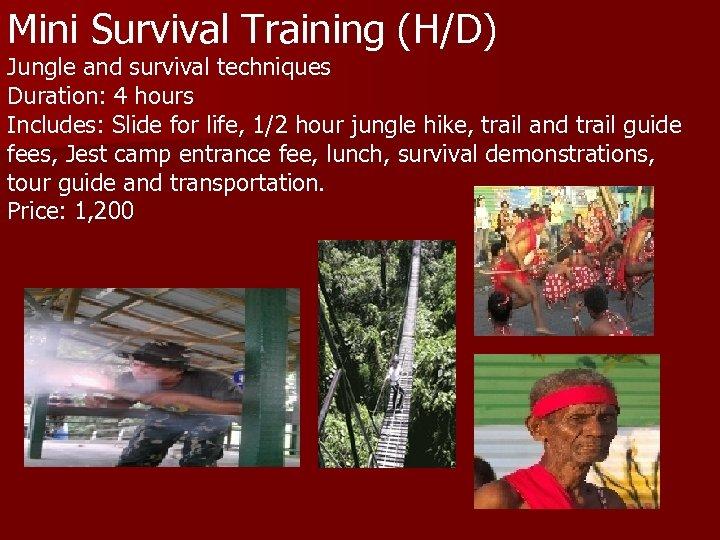 Mini Survival Training (H/D) Jungle and survival techniques Duration: 4 hours Includes: Slide for
