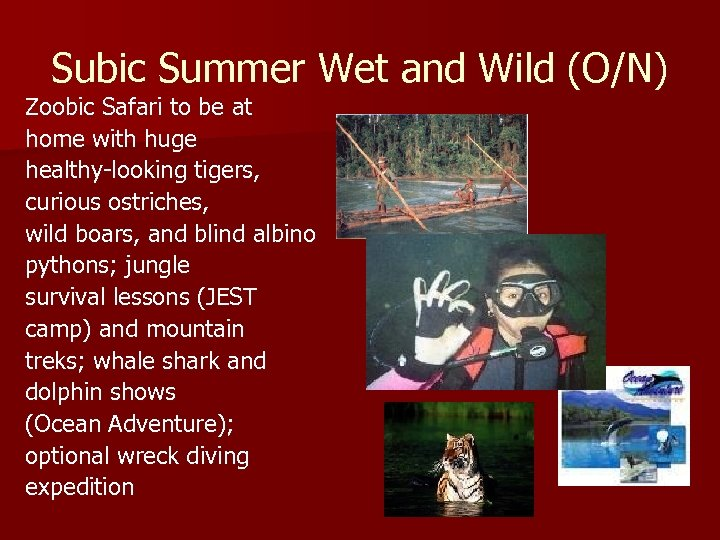 Subic Summer Wet and Wild (O/N) Zoobic Safari to be at home with huge