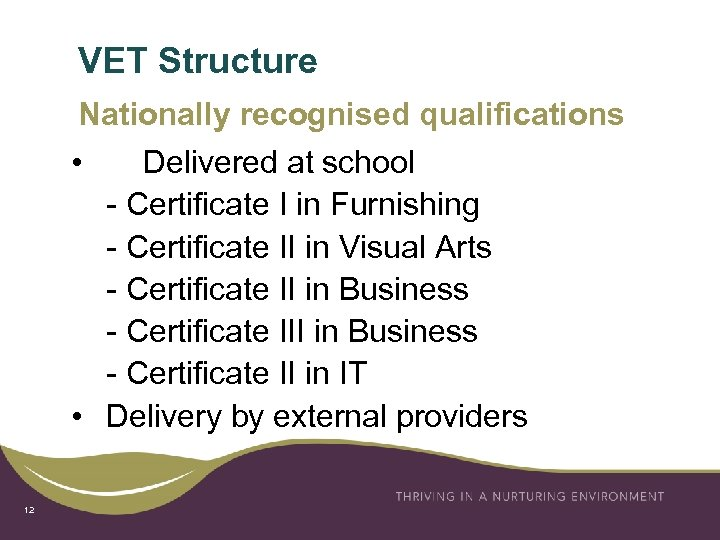 VET Structure Nationally recognised qualifications • Delivered at school - Certificate I in Furnishing