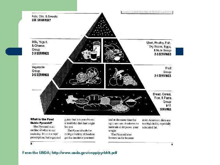 From the USDA; http: //www. usda. gov/cnpp/pyrbklt. pdf