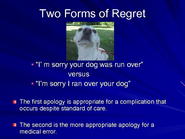 "Two Forms of Regret § ""I' m sorry your dog was run over"" versus"
