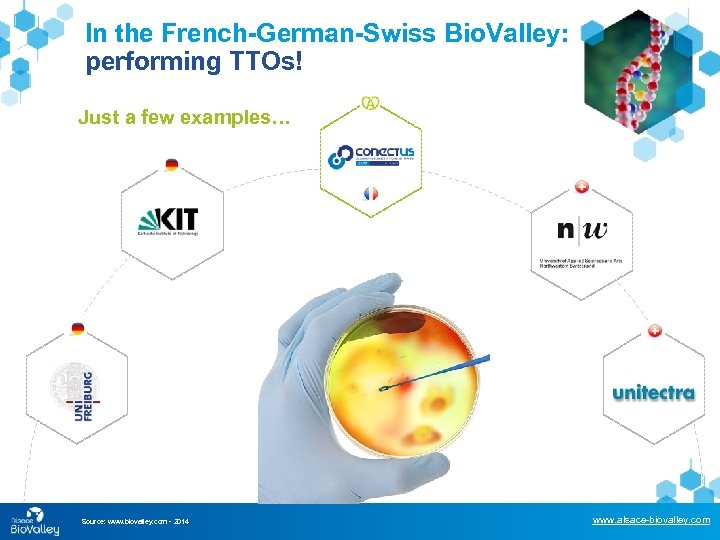 In the French-German-Swiss Bio. Valley: performing TTOs! Just a few examples… Source: www. biovalley.