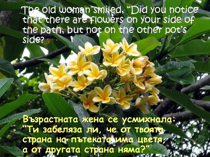 "The old woman smiled, ""Did you notice that there are flowers on your side"