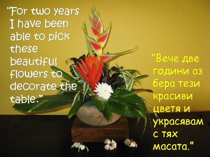 """""""For two years I have been able to pick these beautiful flowers to decorate"""