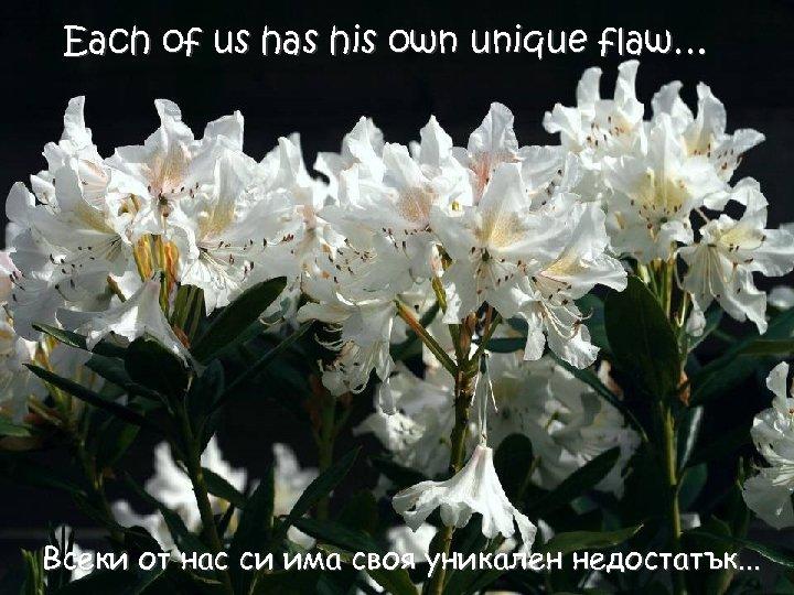 Each of us has his own unique flaw… Всеки от нас си има своя