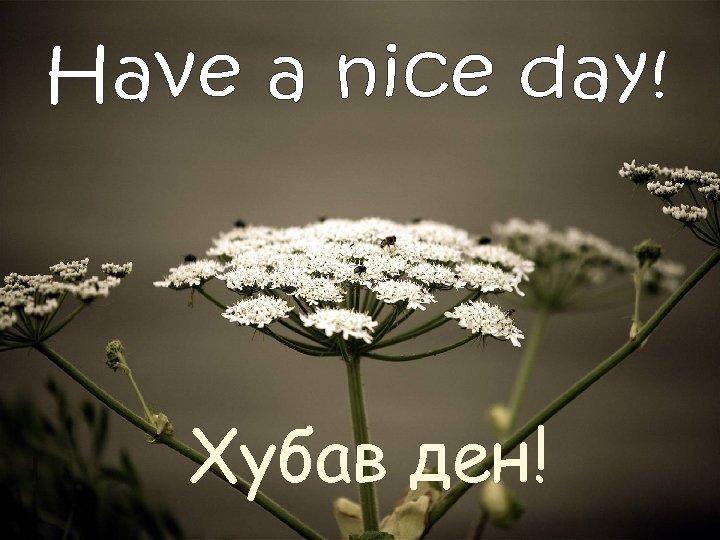 Хубав ден!