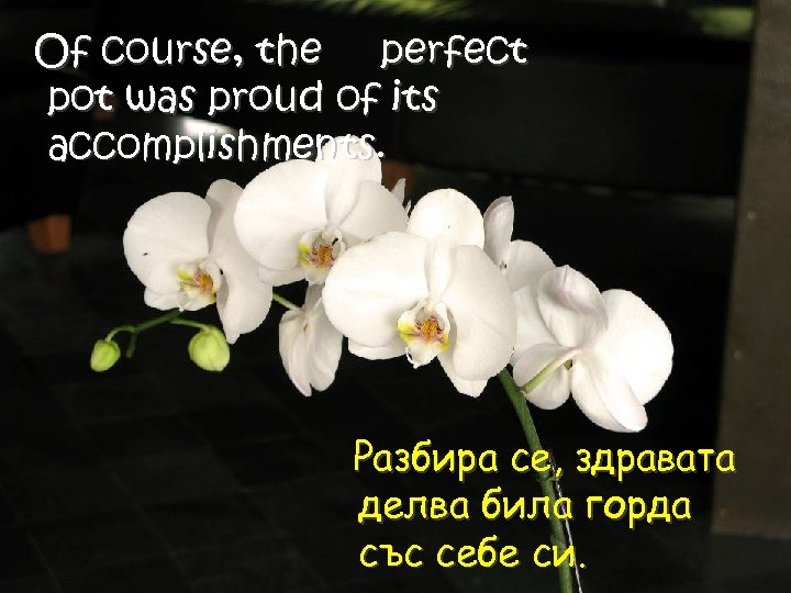 Of course, the perfect pot was proud of its accomplishments. Разбира се, здравата делва